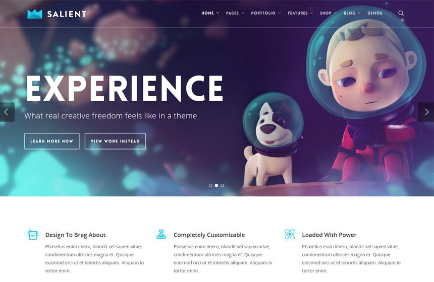 Salient -Most-Popular-WordPress-Themes