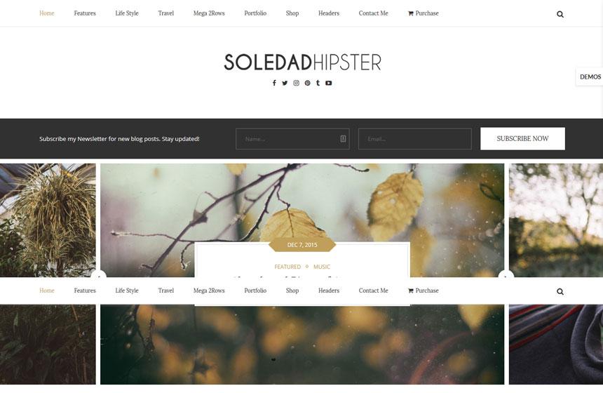 Soledad-Popular wordpress Themes