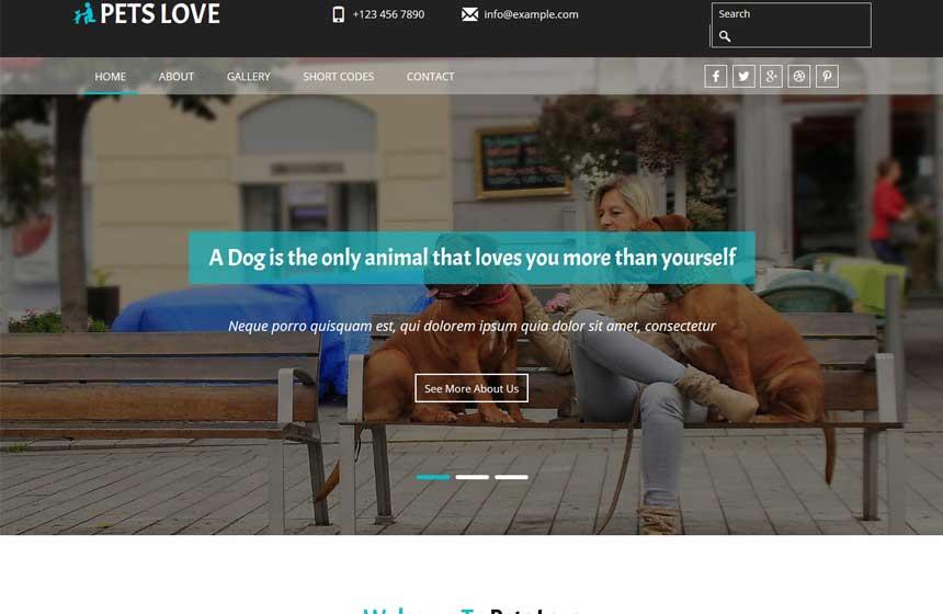 Pets-Love
