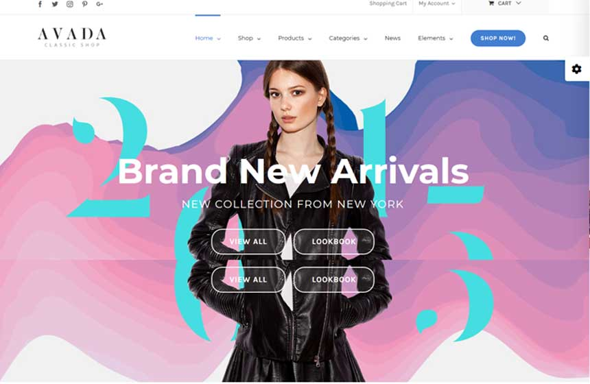 10 Best WordPress Themes For WooCommerce Dropshipping